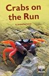 Crabs on the Run