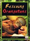 Rescuing Orangutans
