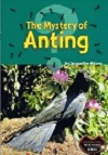 The Mystery of Anting